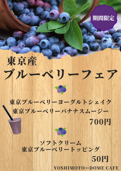 TOKYO BLUEBERRY (2).png